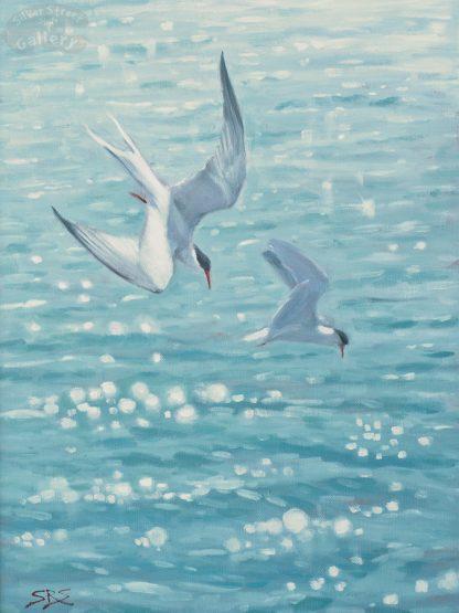 Fishing Terns