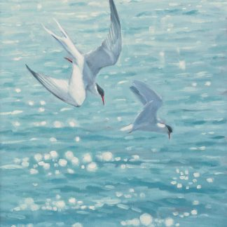 Fishing Terns